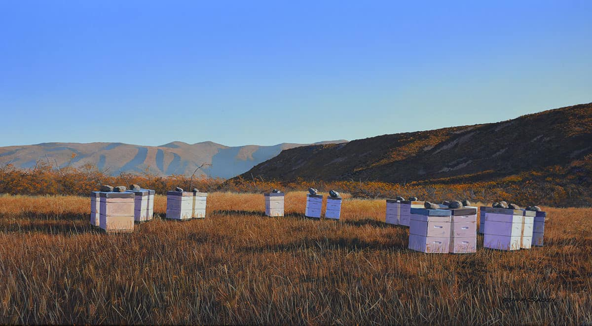 Beehives,-Henburn-Road,-South-Canterbury