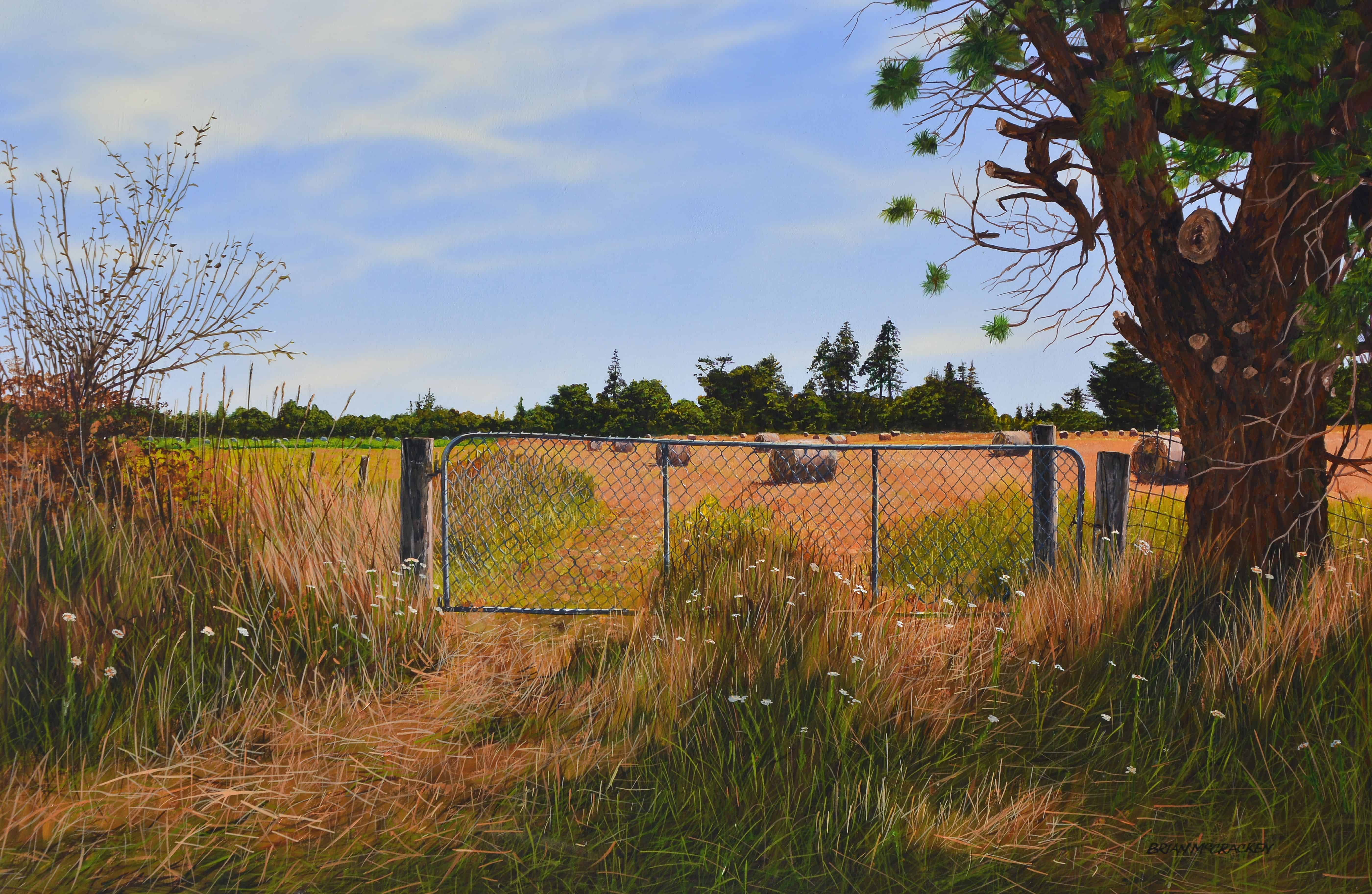 Summer Landscape, North Canterbury