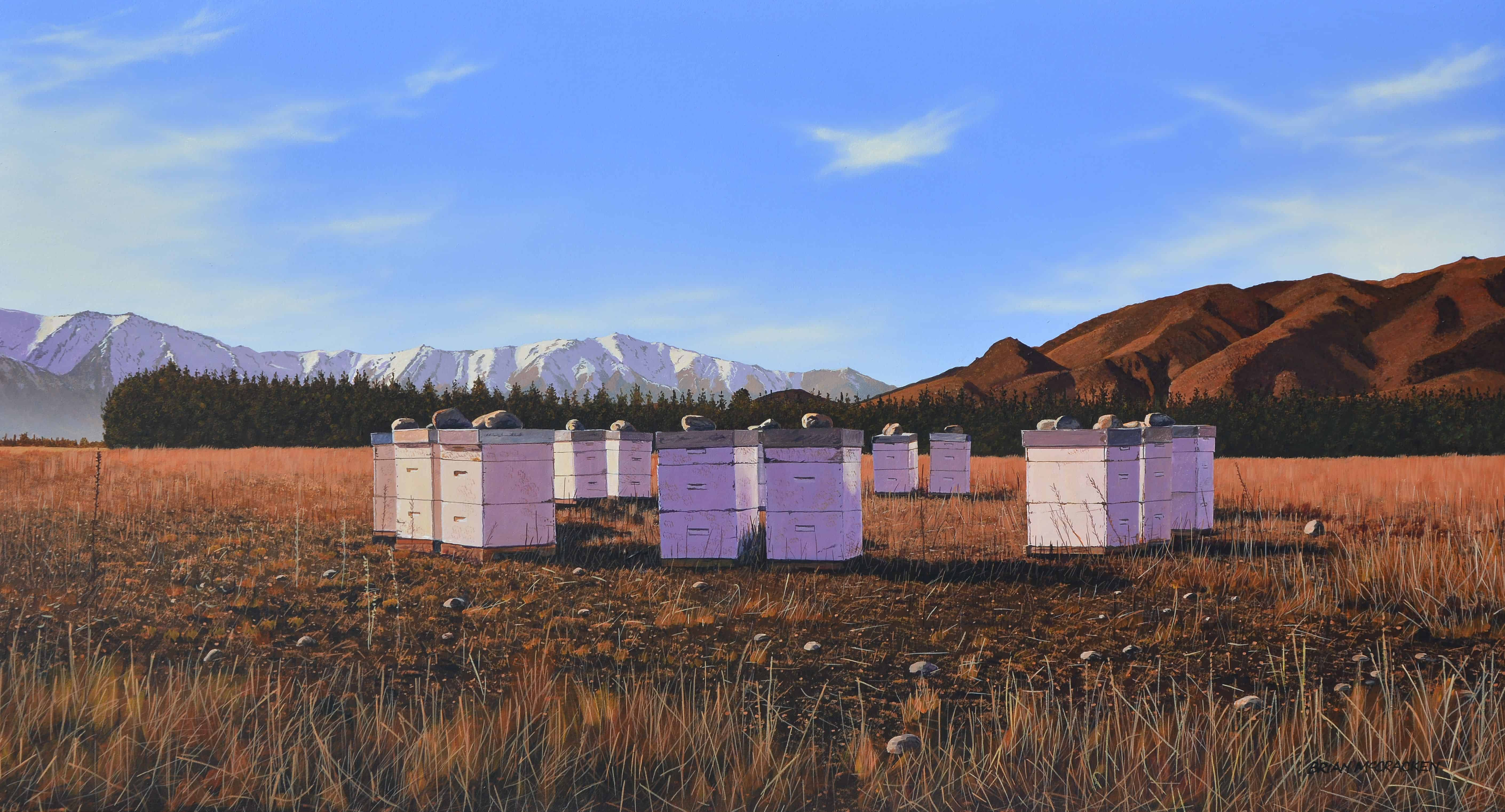 Winter Beehives, Omarama