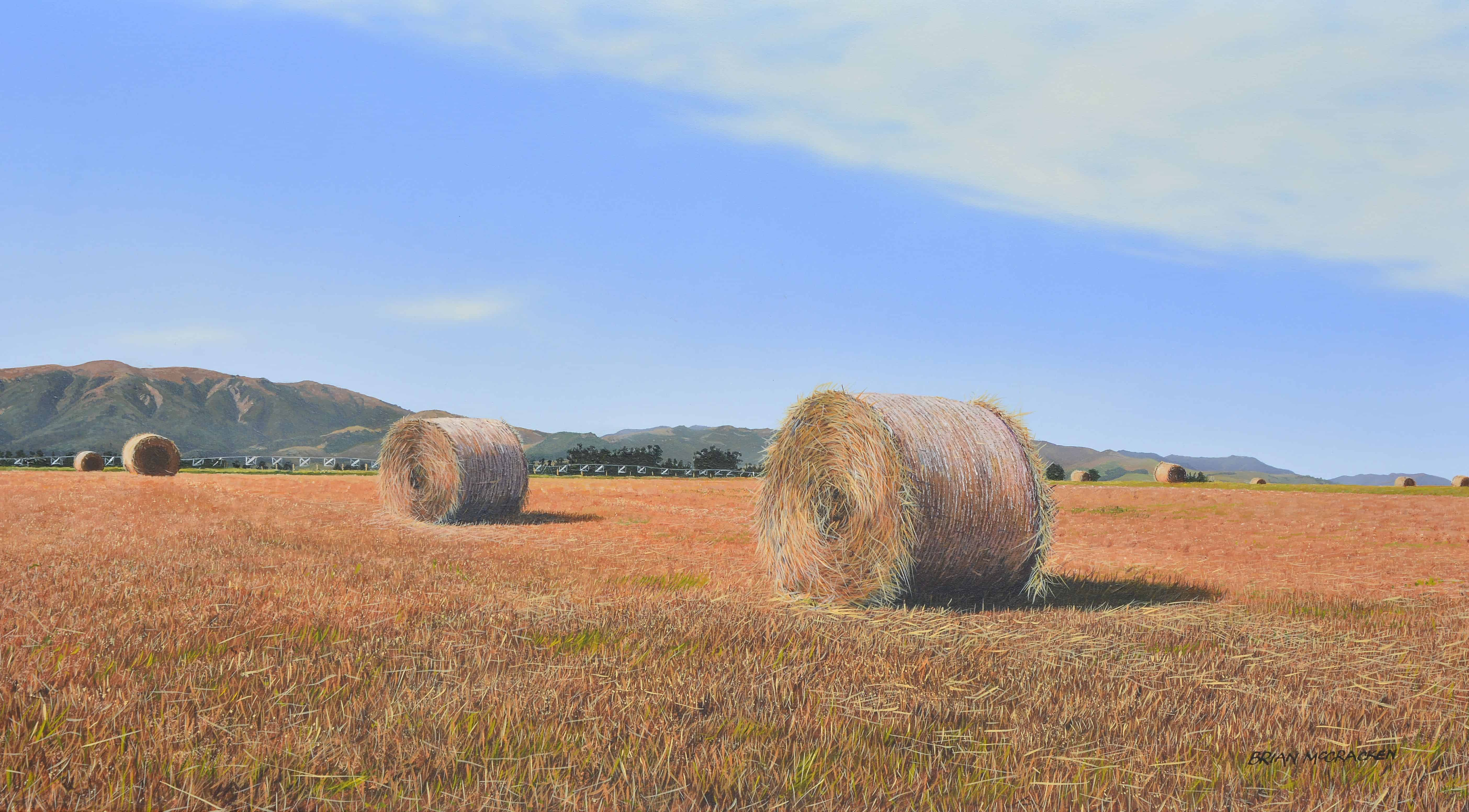 Haymaking, North Canterbury