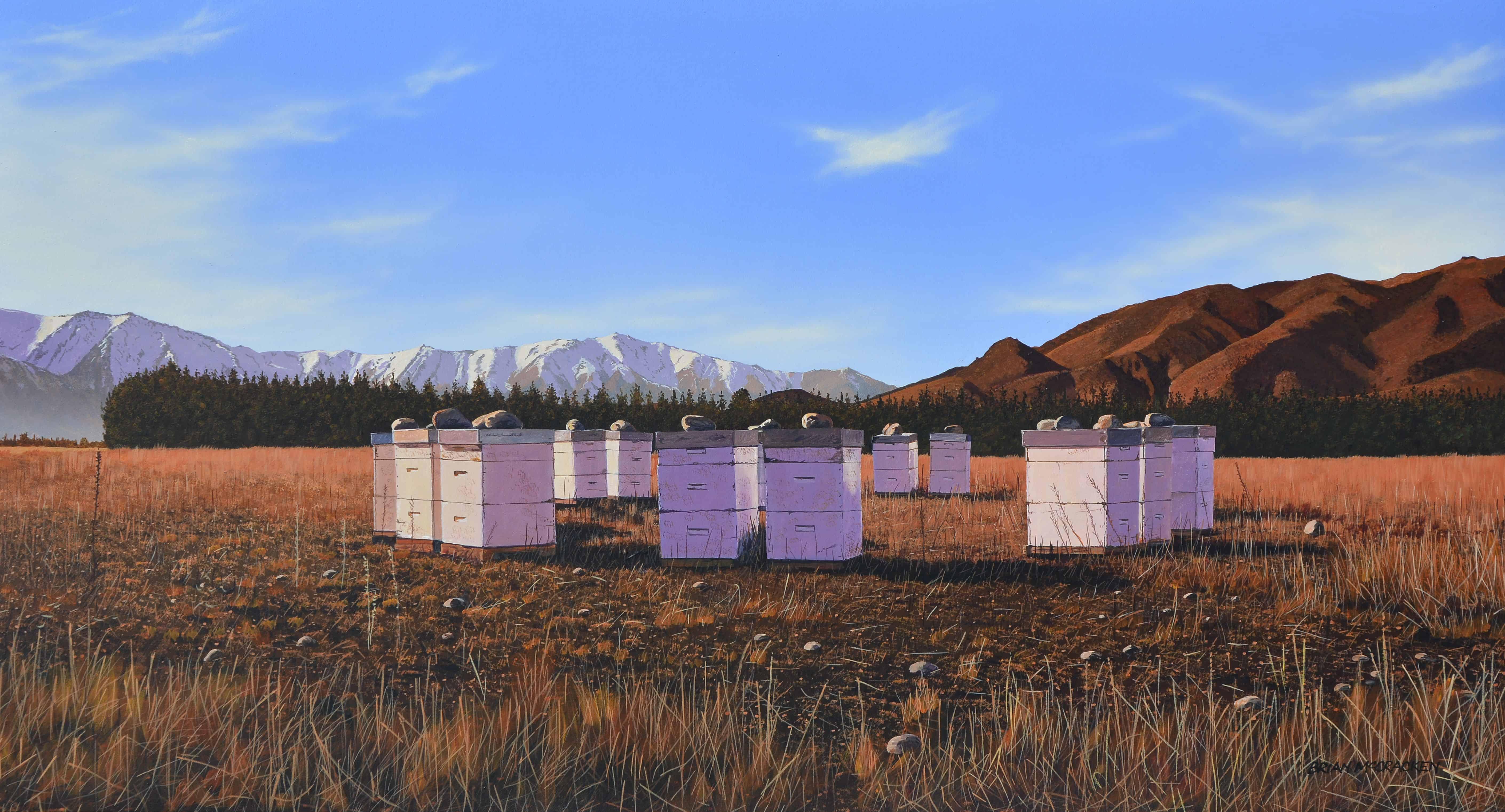 Winter Beehives, Omarama