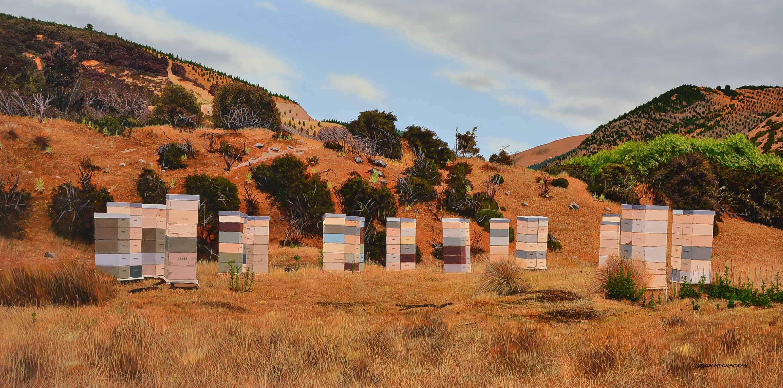 Warren's Beehives Okuku Pass, North Canterbury