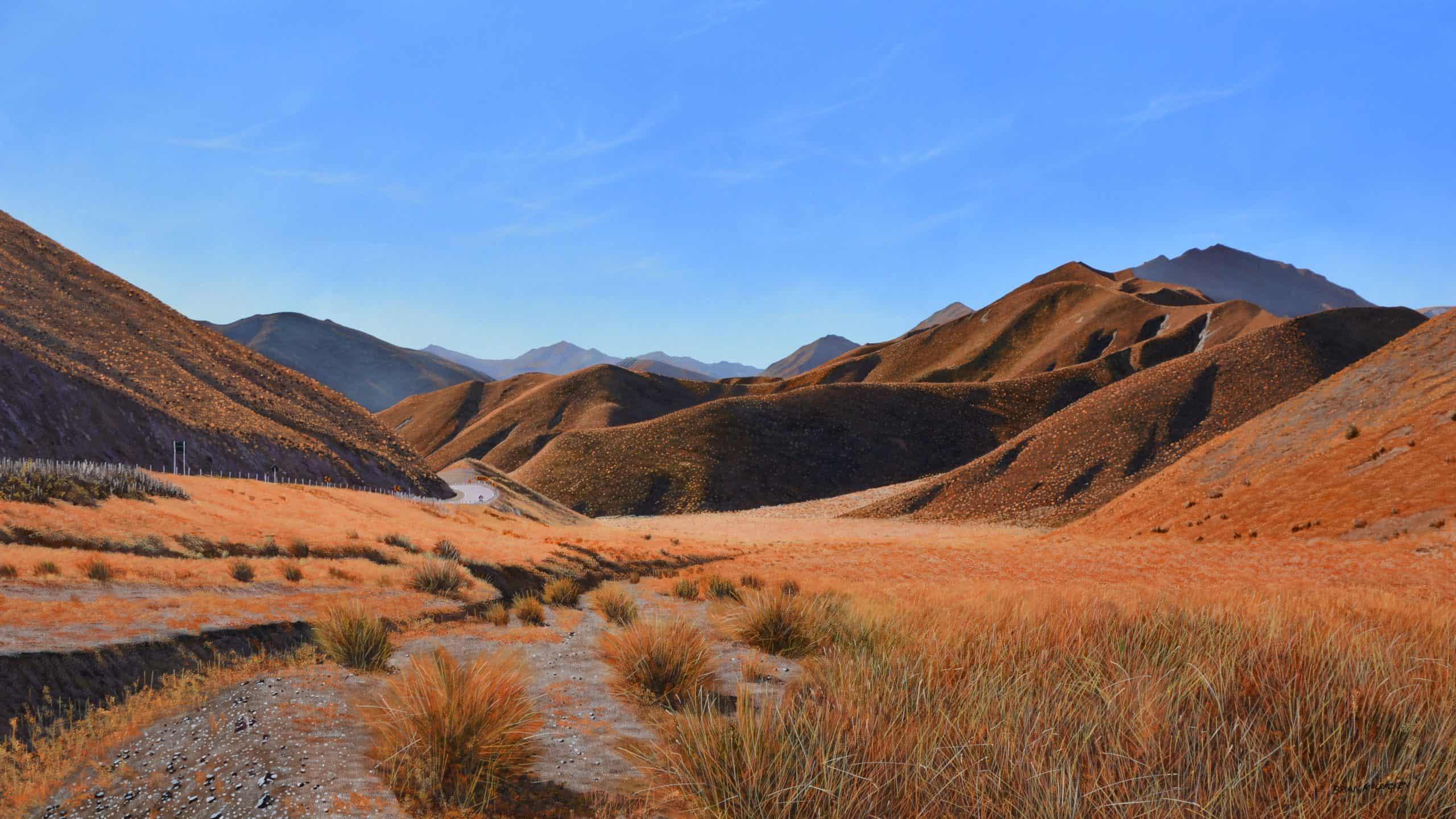 Autumn Lindis Pass